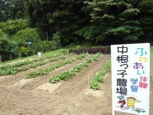 140701_photo_001